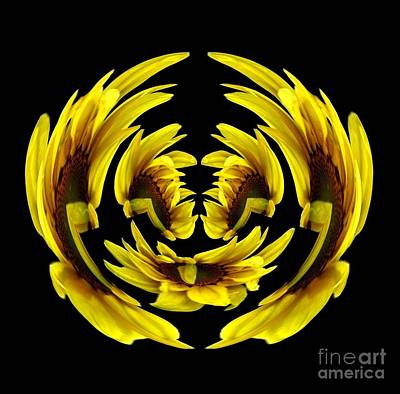 Photograph - Sunflower With Warp And Polar Coordinates Effects by Rose Santuci-Sofranko