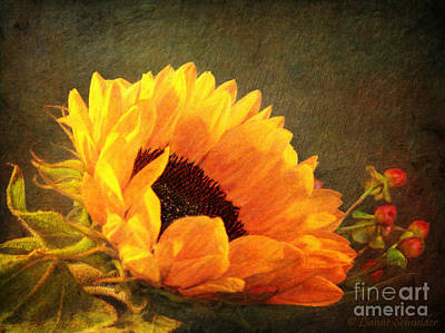 Old Fashioned Digital Art - Sunflower - You Are My Sunshine by Lianne Schneider