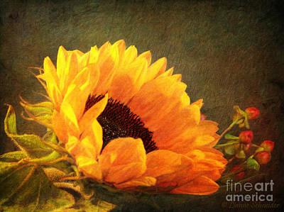 Animals Digital Art - Sunflower - You Are My Sunshine by Lianne Schneider