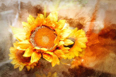 Sunflowers Aglow Art Print by Mary Timman