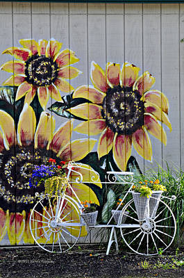 Sunflowers And Bicycle Art Print by Kenny Francis