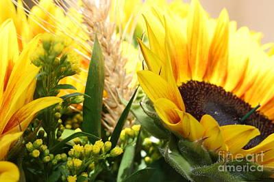 Sunflowers And Wheat Art Print