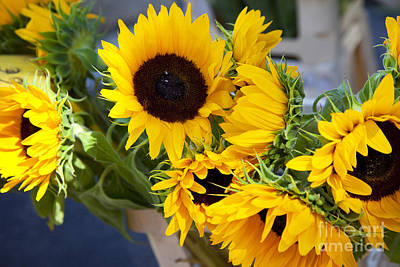 Photograph - Sunflowers At Market by Brian Jannsen