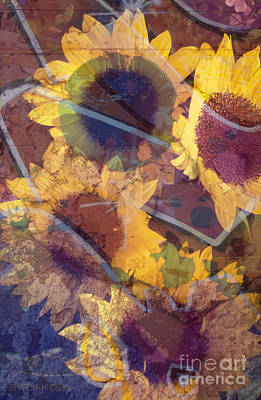 Photograph - sunflowers floral photography - Wallflowers by Sharon Hudson