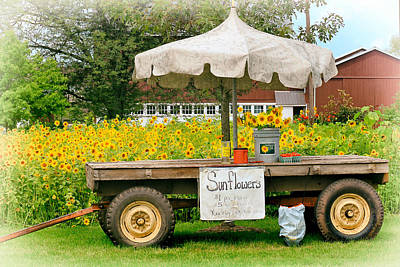 Photograph - Sunflowers For Sale by Carolyn Derstine