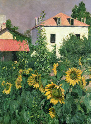 Rooftops Painting - Sunflowers In The Garden At Petit Gennevilliers  by Gustave Caillebotte