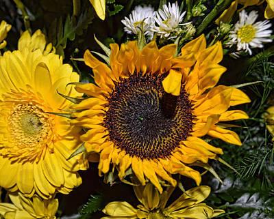 Sunflowers Art Print by Mark Orr