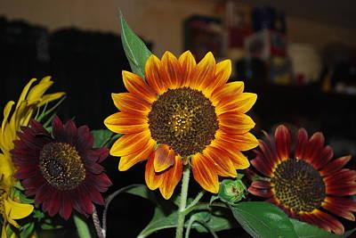 Sunflowers Art Print by Robert Floyd