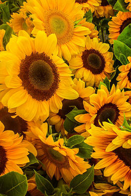 Photograph - Sunflowers by Roger Mullenhour