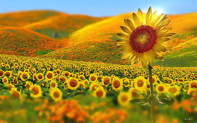 Sunflowers Royalty-Free and Rights-Managed Images - Sunflowers by Russ Harris