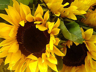 Sunflowers Wide Print by Amy Vangsgard