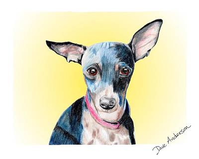 Animal Shelter Drawing - Sunga - A Former Shelter Sweetie by Dave Anderson