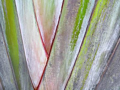 Sunken Gardens Abstract 4 Art Print by Maria Huntley