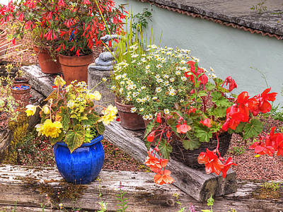 Sunken Kaleidoscope Garden Art Print