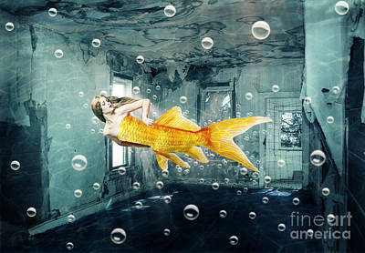 Goldfish Photograph - Sunken Palace by Juli Scalzi