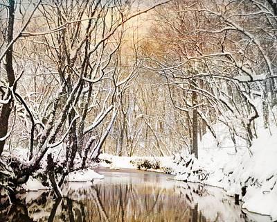 Sunkissed Winter Creek Art Print by Jai Johnson