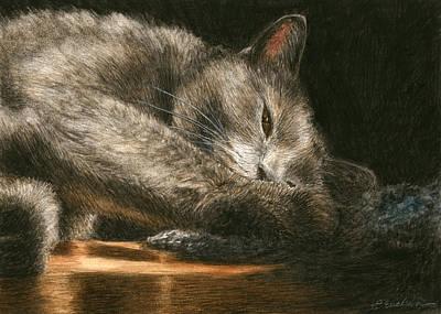 House Pet Painting - Sunlight by Pat Erickson