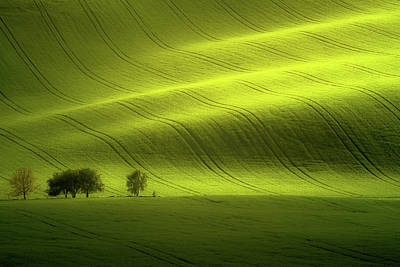 Rolling Hills Photograph - Sunlight by Peter Banny