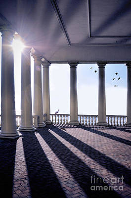 Photograph - Sunlight Through Columns by Jill Battaglia