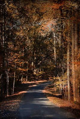 Autumn Scene Photograph - Sunlit Autumn Path by Jai Johnson