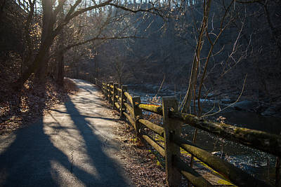 Wall Art - Photograph - Sunlit Path by Scott Hafer