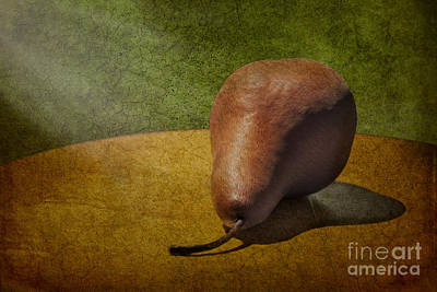 Pear Photograph - Sunlit Pear by Susan Candelario