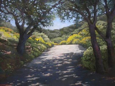 Sunlit Road Art Print by Maralyn Miller