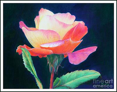 Painting - Sunlit Rose by Mariarosa Rockefeller