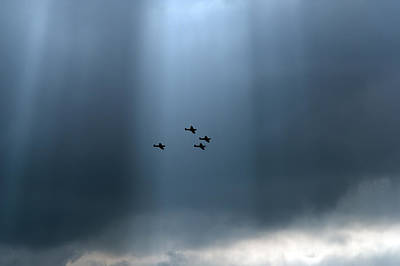 Photograph - Sunlit Spitfires by Gary Eason