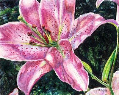 Painting - Sunlit Stargazer by Shana Rowe Jackson
