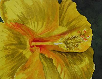 Painting - Sunlit Yellow Hibiscus by Donna Pierce-Clark