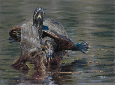 Pastel Painting - Sunnin' Turtle by Christopher Reid