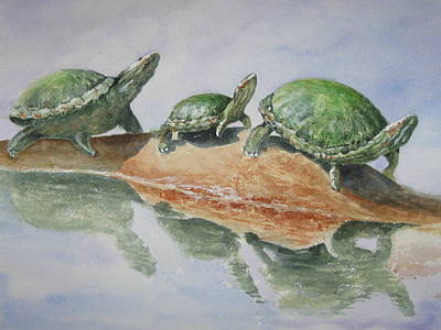 Sunning Turtles Art Print