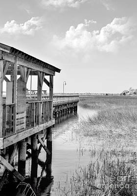 Photograph - Sunny Day Dockside by Kathy Baccari
