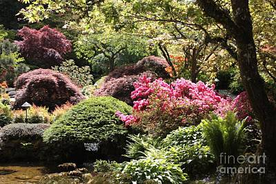 Photograph - Sunny Japanese Garden by Carol Groenen