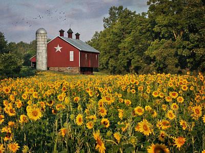 Rural Scenes Digital Art - Sunny Morning by Lori Deiter