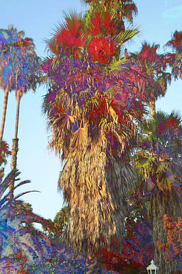 Sunny Palms Art Print by John Fish