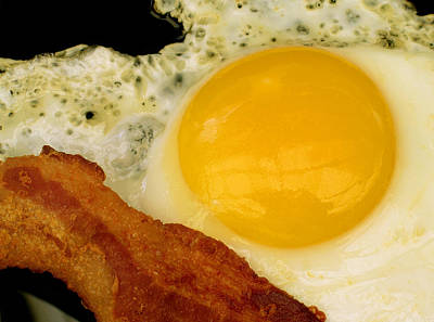 Sunny Side Up Photograph - Sunny Side Up by James Temple