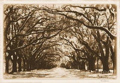 Antique Look Digital Art - Sunny Southern Day With Old World Framing by Carol Groenen