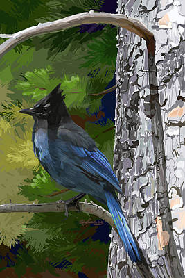 Wall Art - Painting - Sunny Stellers Jay by Pam Little