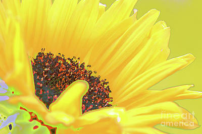 Sunny Sunflower Print by Carol Lynch
