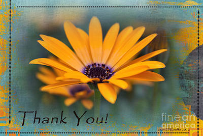 Art Print featuring the photograph Sunny Thank You  by Jean OKeeffe Macro Abundance Art