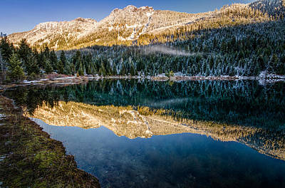 Sunny Tops And Icy Skirts At Gold Creek Pond Art Print by Brian Xavier