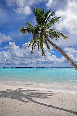Sunny Tropic Day. Maldives Print by Jenny Rainbow