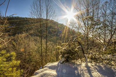 Photograph - Sunny Winter by Jay Huron