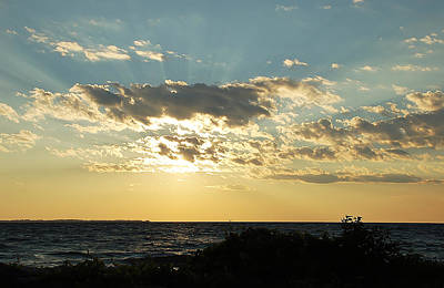 Photograph - Sunrays by Aimee L Maher Photography and Art Visit ALMGallerydotcom