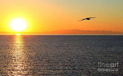 Photograph - Sunrise 2 by Theresa Ramos-DuVon