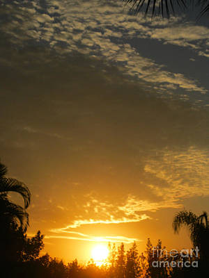 Photograph - Sunrise 20 by Oksana Semenchenko