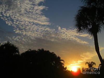 Photograph - Sunrise 22 by Oksana Semenchenko
