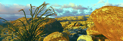 Sunrise Alpenglow Near Bow Willow Print by Panoramic Images